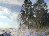 Фото природы. Пейзажи. Текстуры. Профессиональный фотограф в Киеве. 84