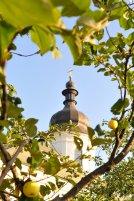 300 фото с храмового праздника Преображение Господне Спасо-Преображенского скита Ионинского монастыря 4