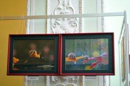 То, что радует глаз и где отдыхает душа. Выставка Вячеслава Мищенко в Национальной Парламентской библиотеке Украины. 5