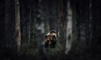 national-geographic-photo_kiev_0042
