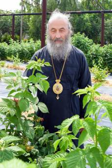 0034_best_pictures_of_orthodoxy