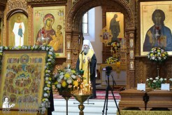 0115_great ukrainian procession with the prayer for peace and unity of ukraine