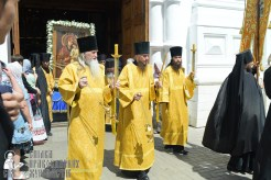 0127_great ukrainian procession with the prayer for peace and unity of ukraine