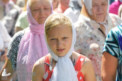 0177_great ukrainian procession with the prayer for peace and unity of ukraine
