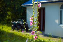 gornostaypol nikolay chudotvoretsl photo 0026