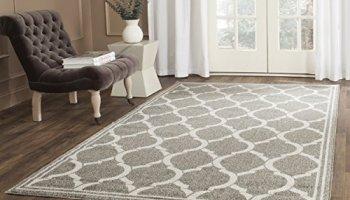 Safavieh Amherst Collection AMT423R Dark Grey and Beige Indoor ...