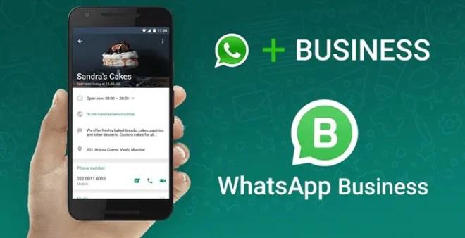 Whatsapp Business. Funzioni e limiti di questa App.
