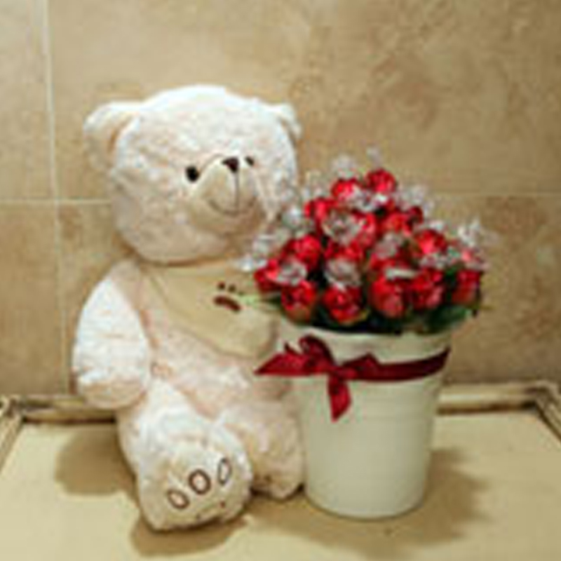 Teddy Bear Bucket 1650
