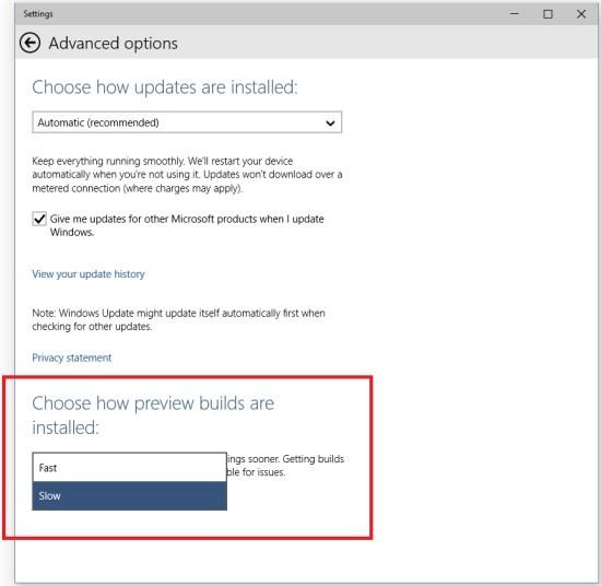 Microsoft_Windows10_update_options