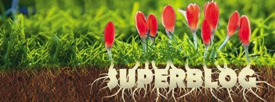 spring-superblog-2016