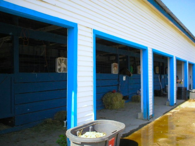 Horse Barn Closeup
