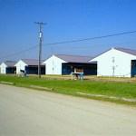 More Horse Barns