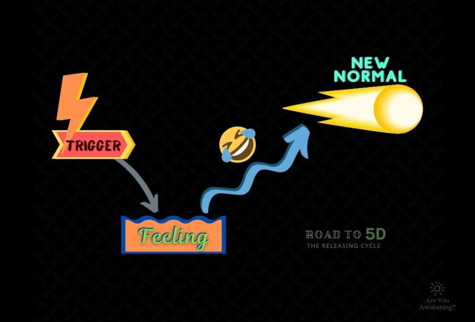 The Road to 5D: Recognize Your Release Cycles