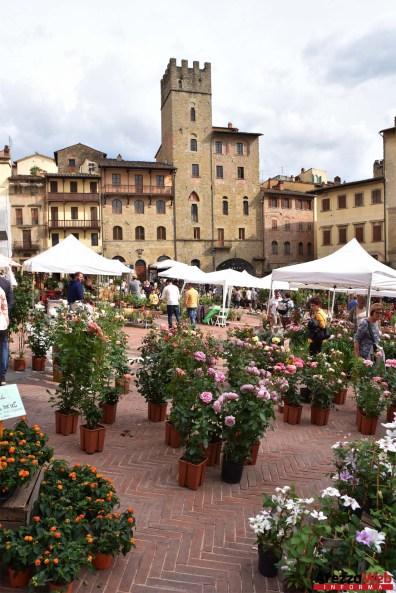 Fiori in Piazza Grande - Arezzo 06