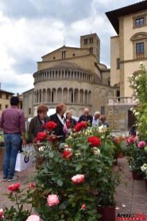 Fiori in Piazza Grande - Arezzo 15