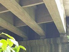viadotto-ponte-a-chiani_4