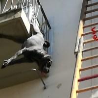 Cane rimane appeso alla ringhiera del balcone, salvato dai vigili del fuoco