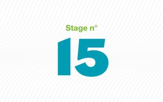 ARFI stage 15 Traitement institutionnel de la violence