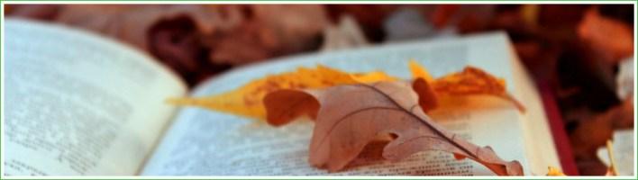 autumnbook2a