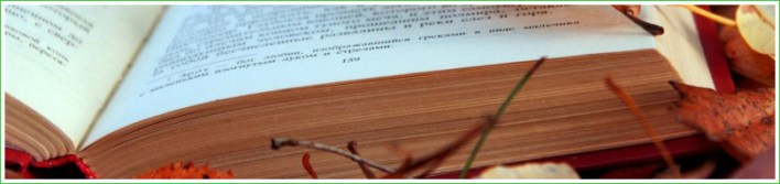 autumnbook2b