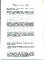 Proyecto-Ley-Prorroga-y-modificación-ley-250806-
