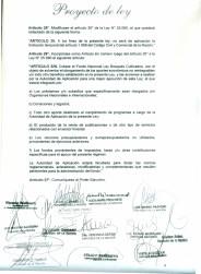 Proyecto-Ley-Prorroga-y-modificación-ley-250808-5