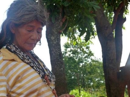 Mbya. Foto Mujer Indigena (Aldea Jejy)