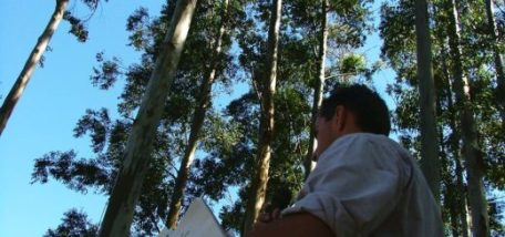 IngenieroForestal2-