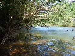 Selva Misionera 18