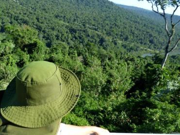 Selva Misionera 8