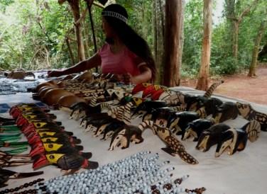 Mujer Mbya Guarani Misiones (3)