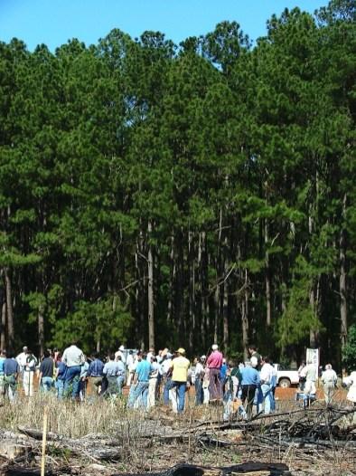 EcosistemasForestales5