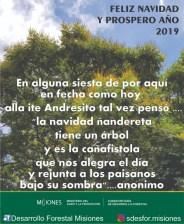 DesarrolloForestalMisiones