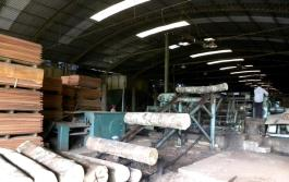 IndustriaMadera1