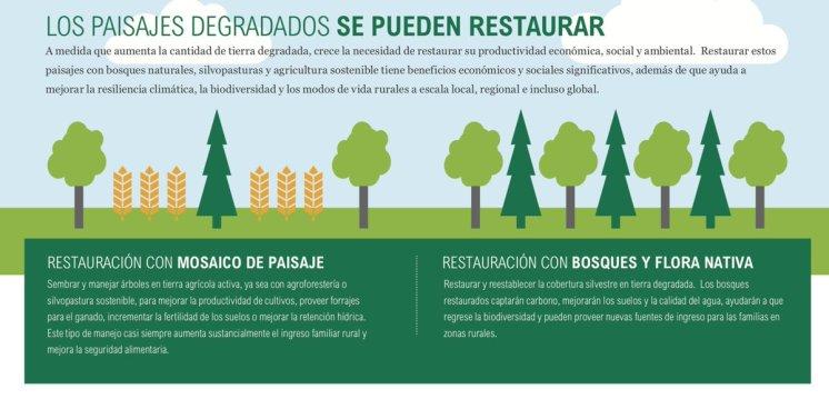 Iniciativa20x20(Peru)