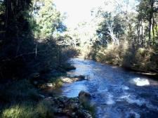 Reserva Privada Pachamama (4)