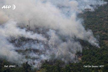 AFP Amazonas 3
