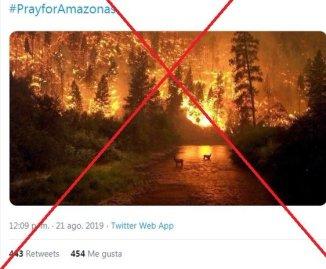 Fotos Engañosas (quema2)