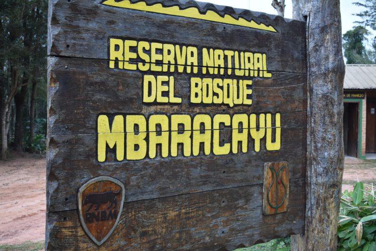 Reserva Mbaracayu (15)