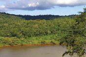 Sobre el río Uruguay - Selva de Serranías - Guillermo Gil
