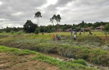 Foto plantacion6