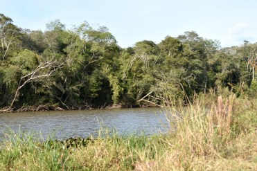 Reserva Urutau 1