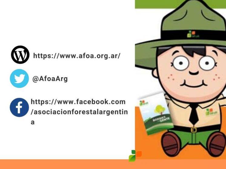 Actividades AFOA
