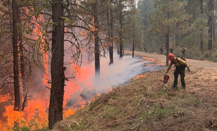 California IncendiosForestales
