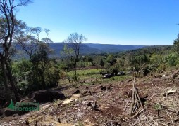 Comunidades de Kuña Piru (invasion de tierras) (14)