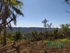 Comunidades de Kuña Piru (invasion de tierras) (17)