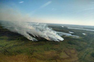quemas Islas Delta Manifestacion (5)