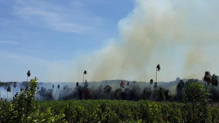 quemas-rurales-1-730x411
