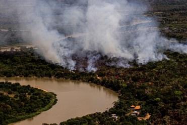 Brasil Pantanal Mato Grosso 2