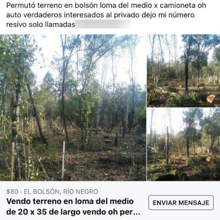 El Bolson usurpacion de tierras (foto Infobae)